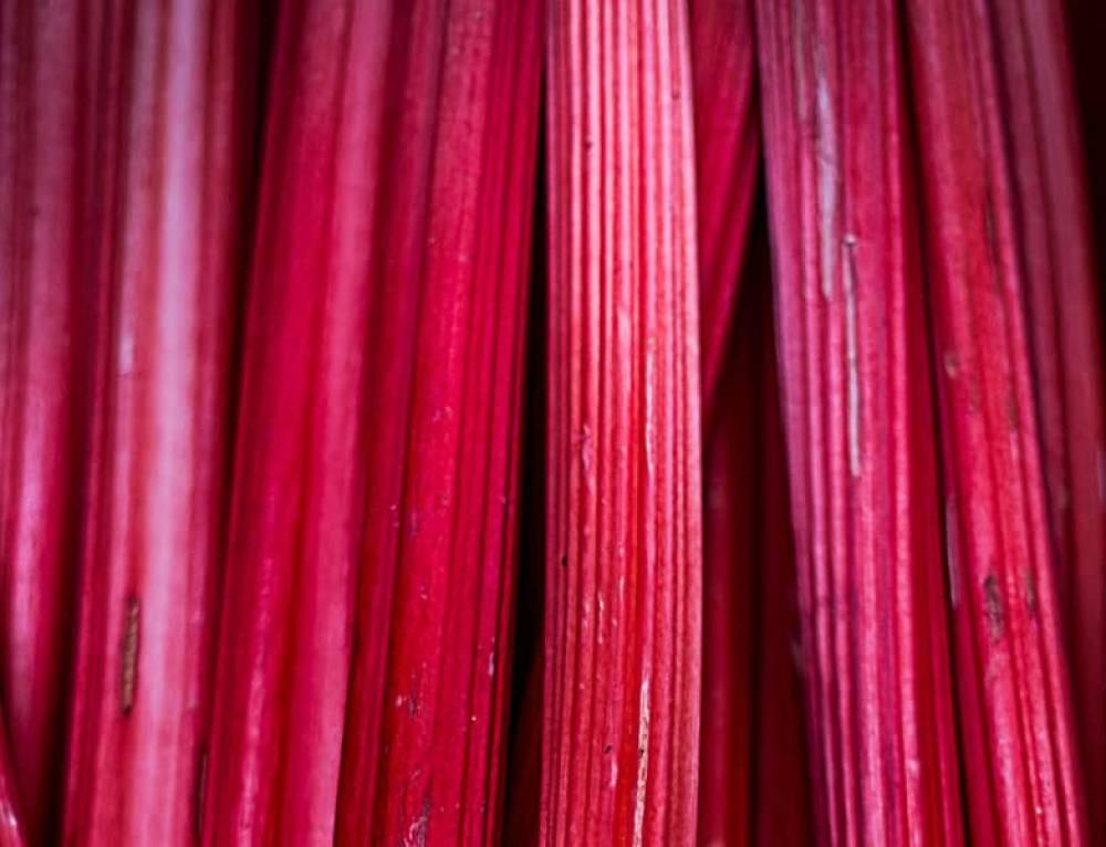 Aliment-beauté : la rhubarbe