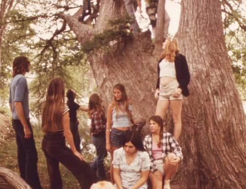 Histoire de la Mode : Les années 1970