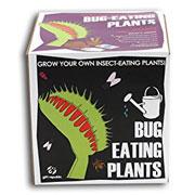 Coffret de plantation de plantes mangeuses d