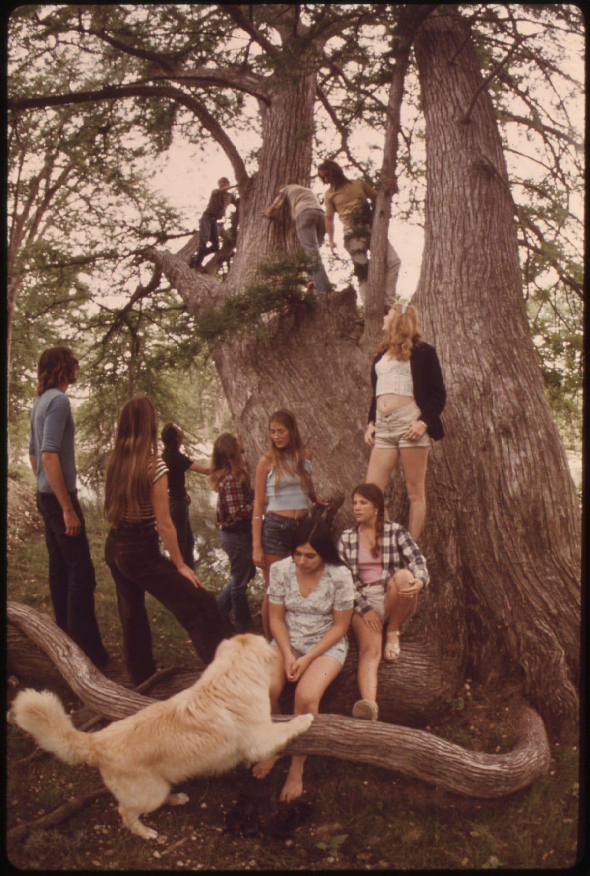 Chemise de bûcheron, 1973