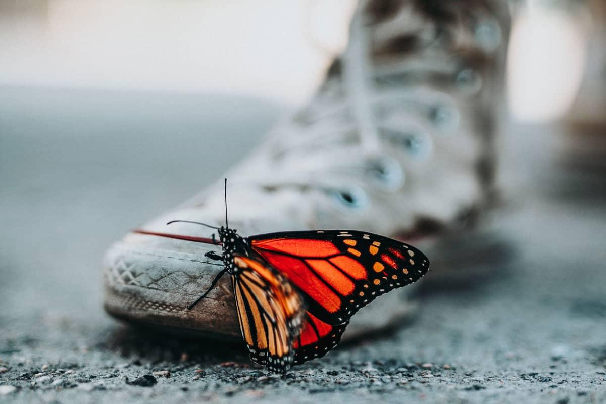 Les chaussures éthiques et écologiques